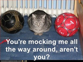 You're mocking me all the way around, aren't you?