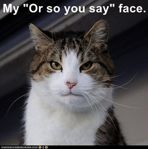 """My """"Or so you say"""" face."""