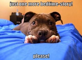 just one more bedtime-story!  please!