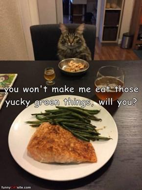My Cat Sounds Just Like My Kids