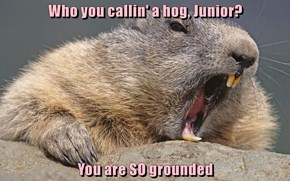 Who you callin' a hog, Junior?  You are SO grounded
