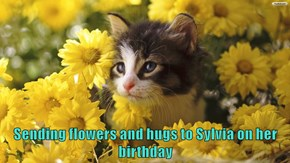 Sending flowers and hugs to Sylvia on her birthday
