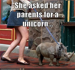 She asked her parents for a unicorn...