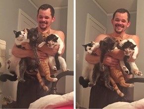 """Behold the Extremely Rare """"Quadruple Cat Scoop"""""""
