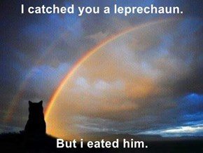 I catched you a leprechaun.  But i eated him.
