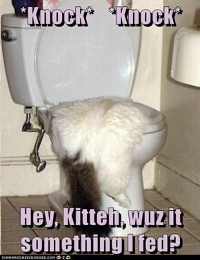 *Knock*    *Knock*  Hey, Kitteh, wuz it something I fed?