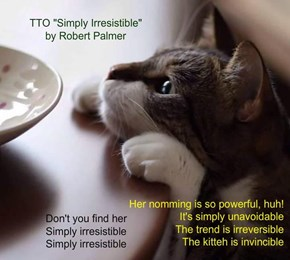 """""""Inevitable nomming"""" (TTO """"Simply Irresistible"""" by Robert Palmer)"""