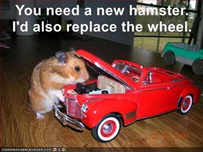 You need a new hamster.       I'd also replace the wheel.
