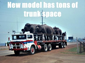 New model has tons of trunk space