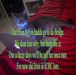 Meowms for Sylvia
