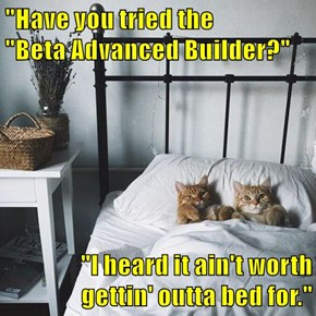 """Have you tried the              ""Beta Advanced Builder?""  ""I heard it ain't worth gettin' outta bed for."""