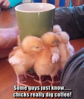 Some guys just know......                                                                                                                                                       chicks really dig coffee!