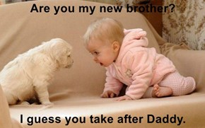 Are you my new brother?   I guess you take after Daddy.
