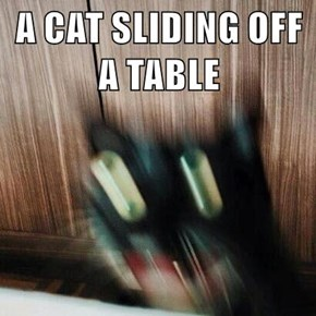 A CAT SLIDING OFF A TABLE