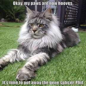 Okay, my paws are now hooves.   It's time to put away the gene splicer, Phil.