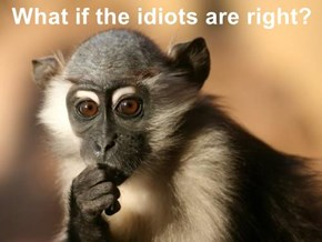 What if the idiots are right?