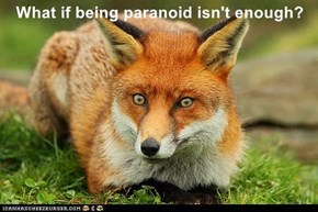 What if being paranoid isn't enough?