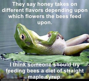 They say honey takes on different flavors depending upon which flowers the bees feed upon.  I think someone should try feeding bees a diet of straight maple syrup.