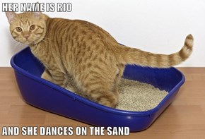 HER NAME IS RIO  AND SHE DANCES ON THE SAND