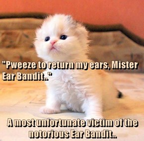 """""""Pweeze to return my ears, Mister Ear Bandit.."""" A most unfortunate victim of the notorious Ear Bandit.."""