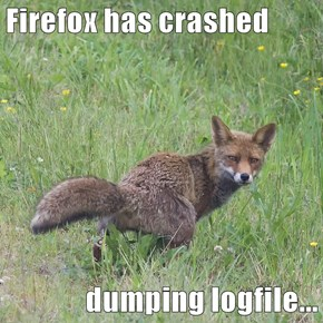 Firefox has crashed  dumping logfile...
