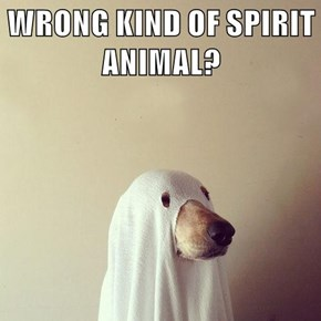 WRONG KIND OF SPIRIT ANIMAL?