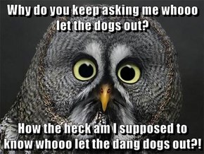 Why do you keep asking me whooo let the dogs out?  How the heck am I supposed to know whooo let the dang dogs out?!