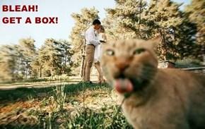 BLEAH!                                                                GET A BOX!