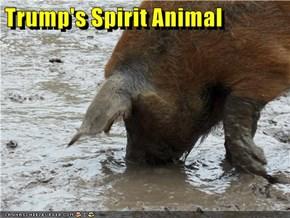 Trump's Spirit Animal