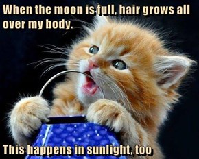 When the moon is full, hair grows all over my body.  This happens in sunlight, too
