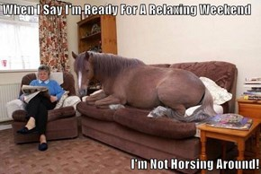 When I Say I'm Ready For A Relaxing Weekend  I'm Not Horsing Around!