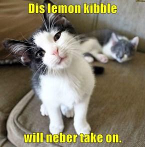 Dis lemon kibble  will neber take on.