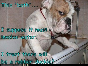 This 'bath'... I suppose it must                involve water. I trust there will                             be a rubber duckie?