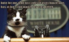 bote fer me 'n de law will sae evey houze mus has at leez wun mouze fer evey kitteh