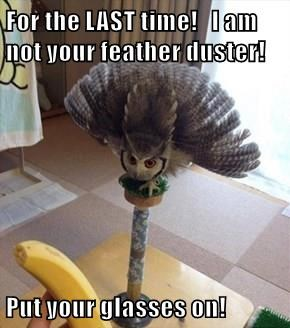 For the LAST time!   I am not your feather duster!  Put your glasses on!