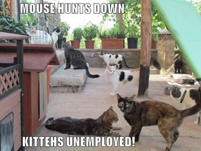 MOUSE HUNTS DOWN.           KITTEHS UNEMPLOYED!