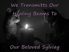 We Transmitts Our Healing Beams To   Our Beloved Sylviag