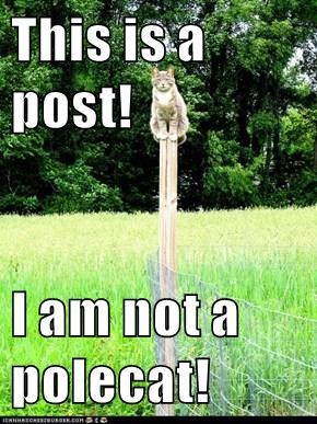 This is a post!  I am not a polecat!