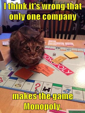 I think it's wrong that only one company   makes the game Monopoly.