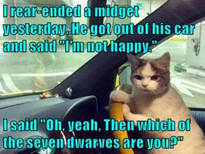 """I rear-ended a midget yesterday. He got out of his car and said """"I'm not happy.""""  I said """"Oh, yeah, Then which of the seven dwarves are you?"""""""