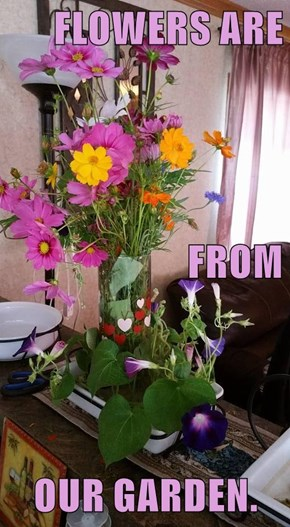 FLOWERS ARE FROM OUR GARDEN.