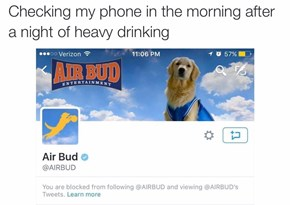 Alcohol and Air Bud Don't Mix