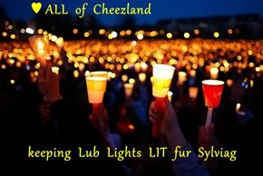 ♥ ALL  of  Cheezland  keeping  Lub  Lights  LIT  fur  Sylviag