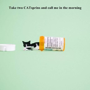 Take two CATsprins and call me in the morning