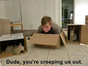 Dude, you're creeping us out.