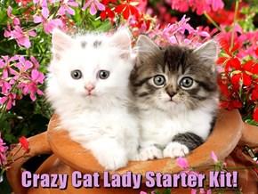 Crazy Cat Lady Starter Kit!