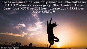 She is our sunshine, our only sunshine.. She makes us H A P P Y when skies are gray.. She'll nebbur know dear.. how MUCH we LUB her.. please don't TAKE our kitty AWAY.. ♥