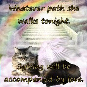 Whatever path she walks tonight.  Sylviag will be accompanied by love.