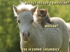 Hossy, I aks yoo a Qwestrian?                                                     wussup?                    Yes, is called *LoLympics*
