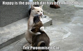 Happy is the puppeh dat has been finded by   Teh Pwommised Cat.